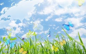 mundo y mariposas.jpg