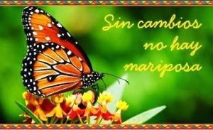 Mariposa y el cambio